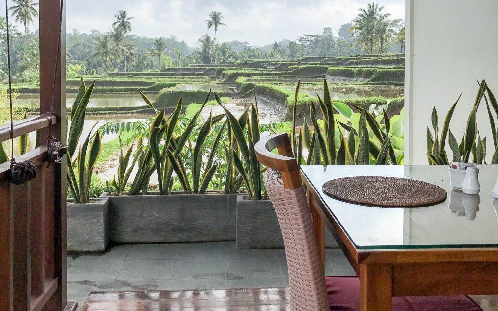 Bali Reisebericht - Ubud