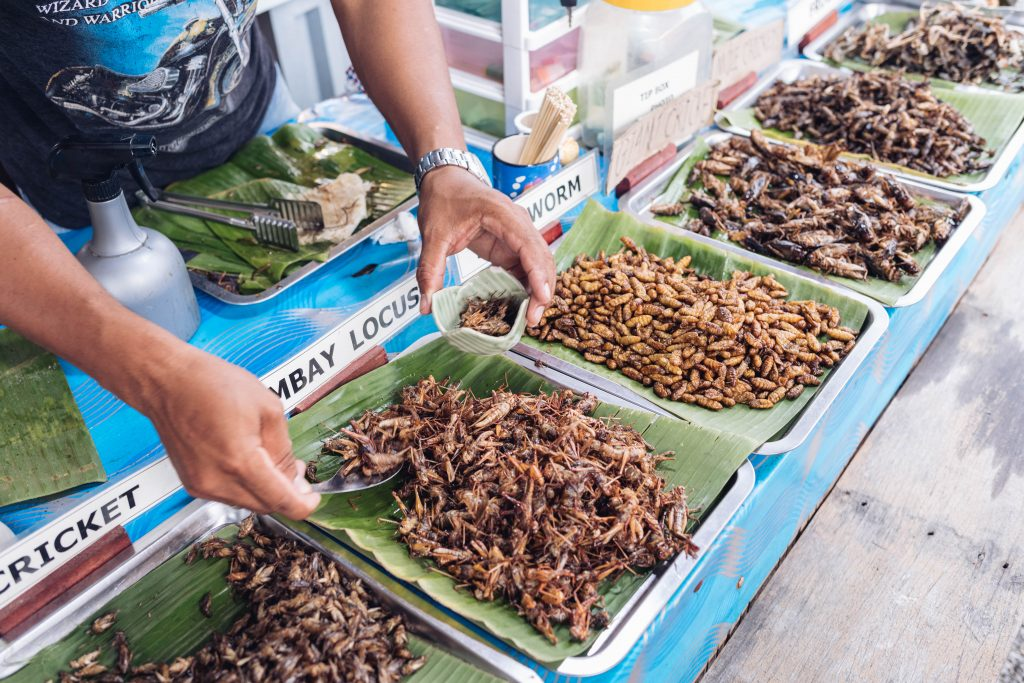 Insekten essen auf dem Street Food Market